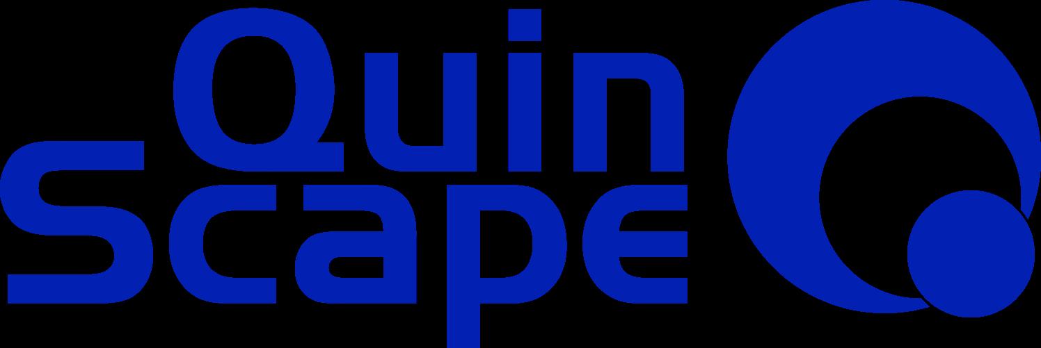 QuinScape, Beratung für digitale Transformation